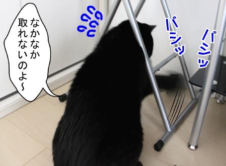 10170003_20121017182540.jpg