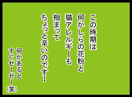 11040003_20121104140746.jpg
