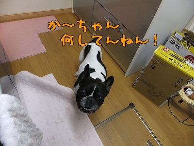 8emAjBJxu1N37MS.jpg