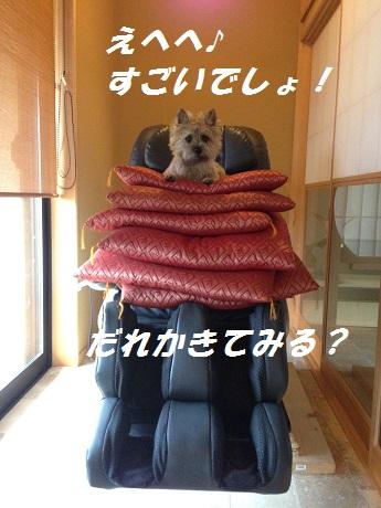 20141120キャンディ1
