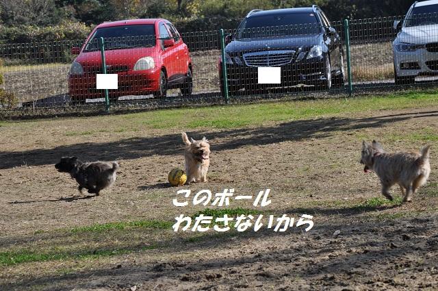 20141123キャンディサッカー5