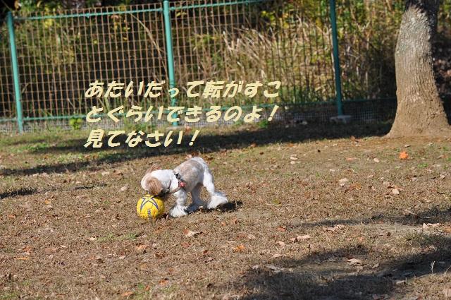 20141123キャンディサッカー8