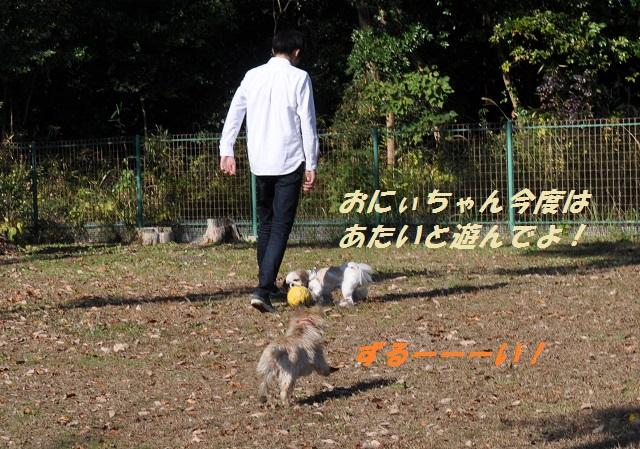 20141123キャンディサッカー7