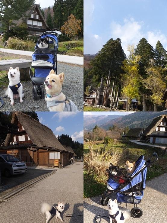 gokayama131124-tile.jpg