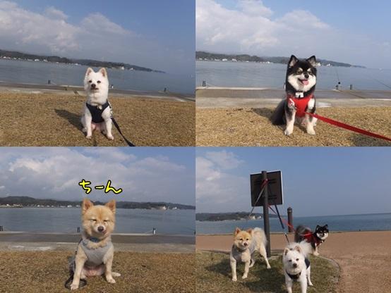 himi_azu131124-tile2.jpg
