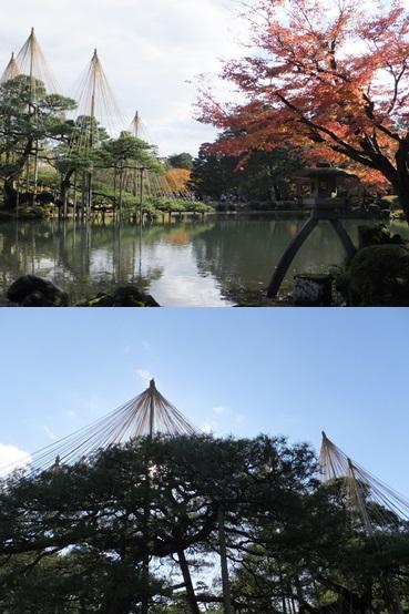 kenroku131123-vert.jpg