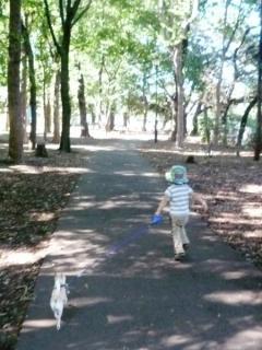 ちび太の散歩