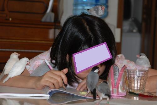 次女の勉強風景