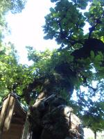 munakata_20100926011510.jpg