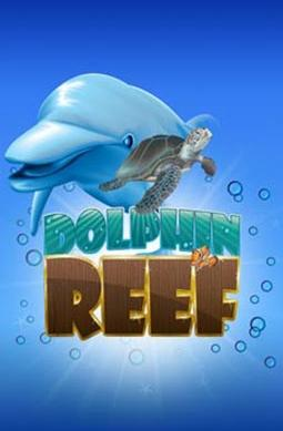 Dolphin-Reef-vu.jpg