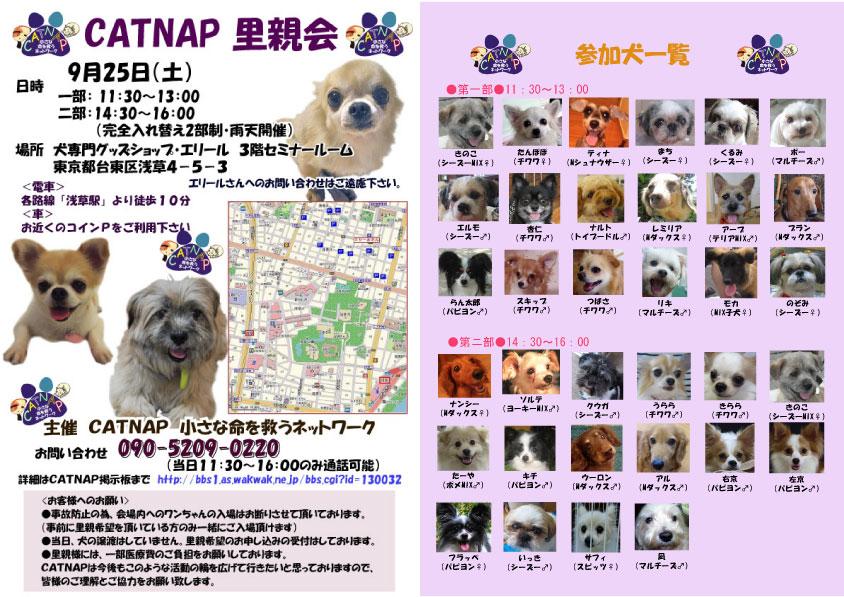 poster2_20100923121953.jpg