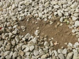 固そうな土