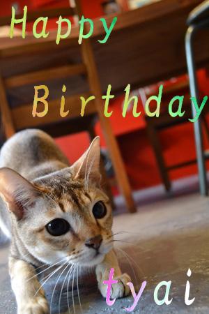 次、誕生日なのは誰でしょう?