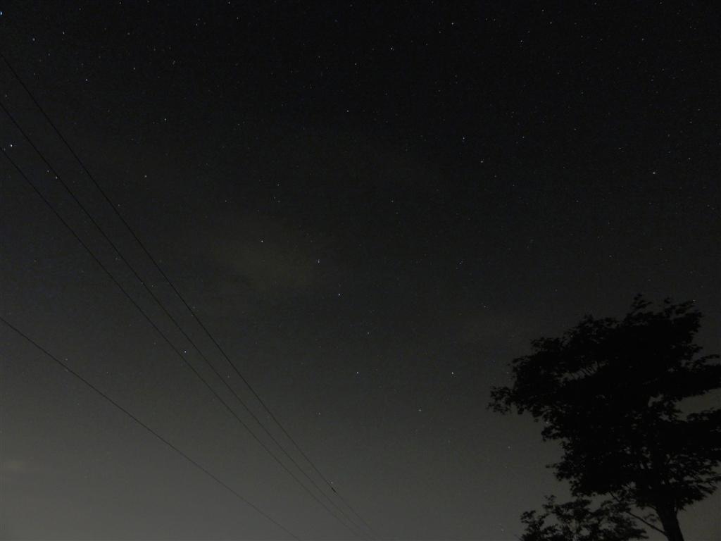 DSC01099 (1)_a