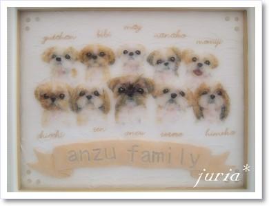 anzu family
