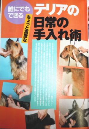 愛犬の友3月号