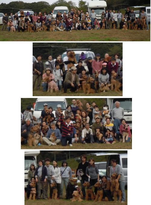 3_20101114031408.jpg