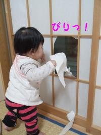 20131209障子①