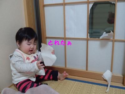 20131209障子③