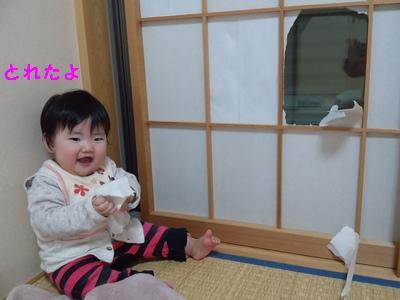 20131209障子④