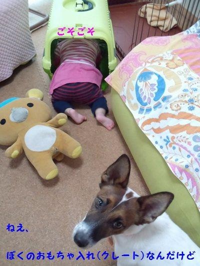 20140103用②(20131119)