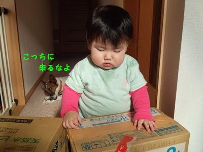 20131204よだれ①