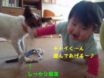 20131204ミルクガム①