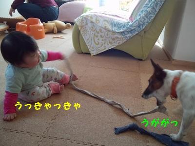 20131204ミルクガム⑤