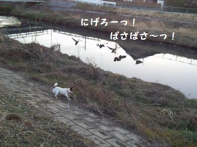 20140129③
