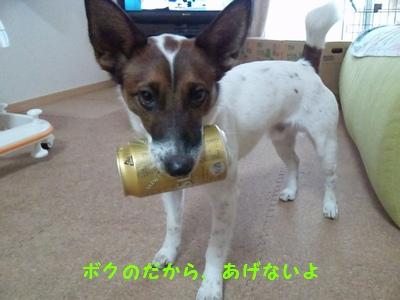 20131227ビール①