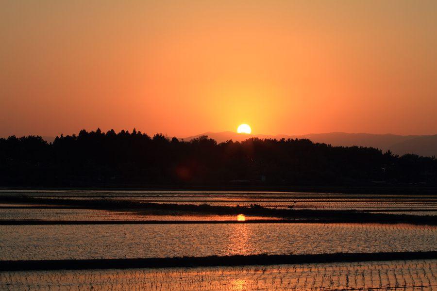 田圃の夕焼け