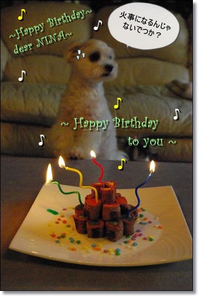 ニーナ4歳のお誕生日 125