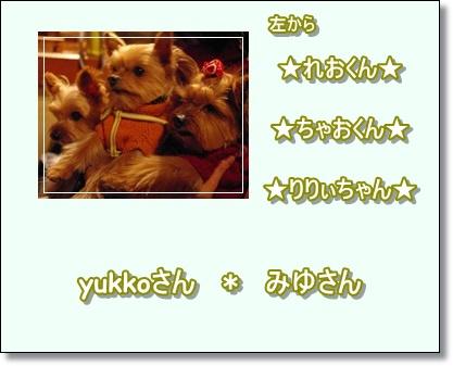ヨーキーオフ会5
