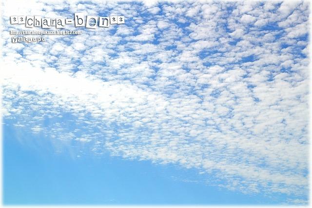 2012_10.jpg