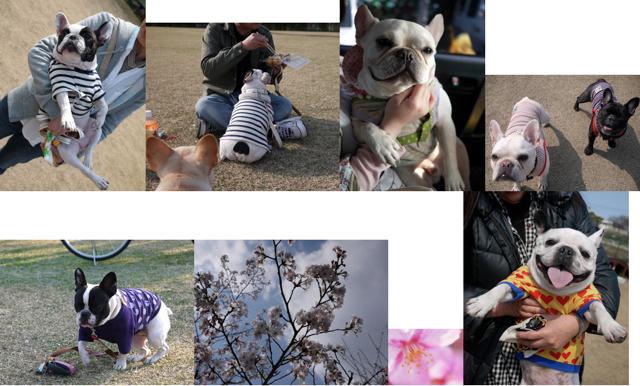 スクリーンショット(2011-04-05 22.57