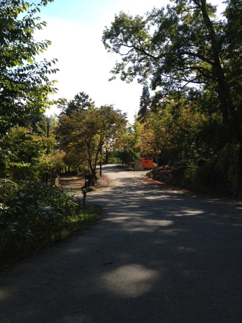 view-10_20121013191157.jpg