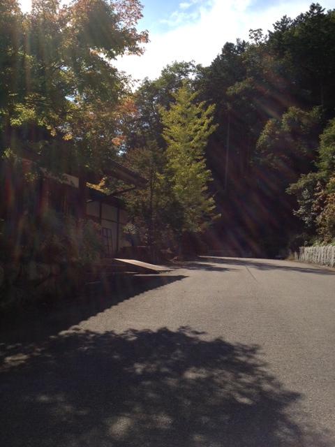 view-9_20121013190806.jpg