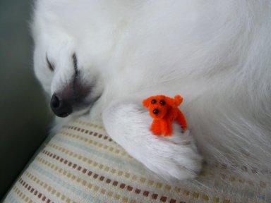 白怪獣が寝ました