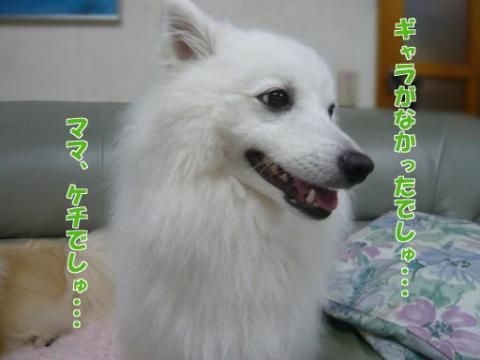 ママのけち~っ!!