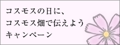 bnr_campaign_o.jpg