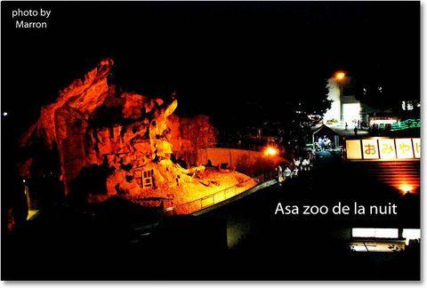 nz2010e012.jpg