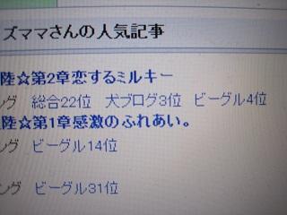 043_20101021155338.jpg