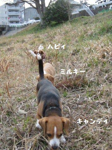 055_20110224095537.jpg