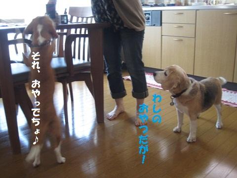 063_20100809211607.jpg