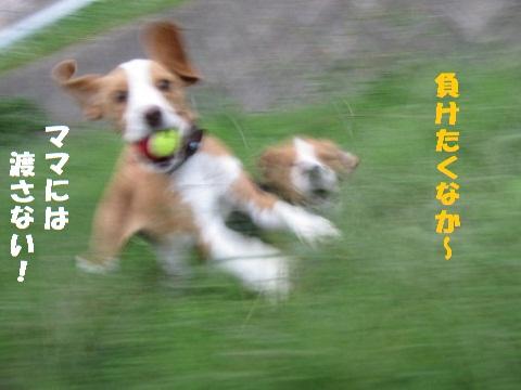 103_20101026210311.jpg