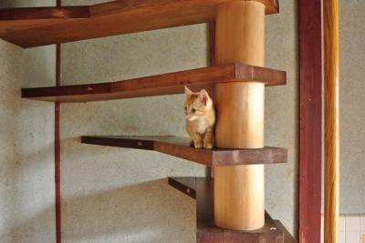20120621階段昇れた!