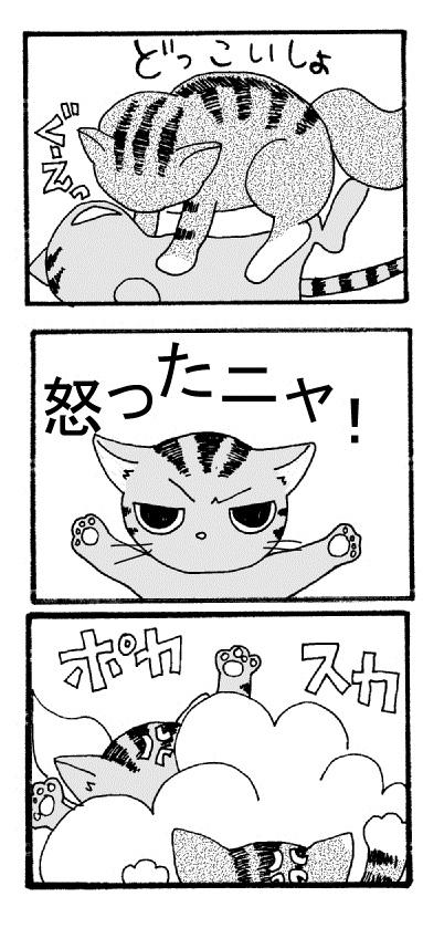 けんか - コピー (2)