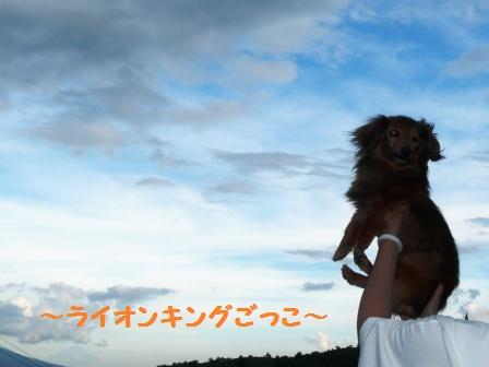 ライオンキングごっこ♪