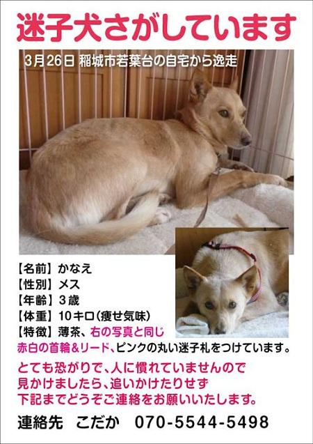 A4_kanae.jpg
