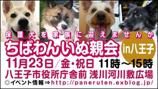 hachiouji8_320x180.jpg